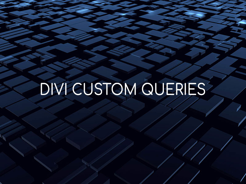 Divi Custom Queries
