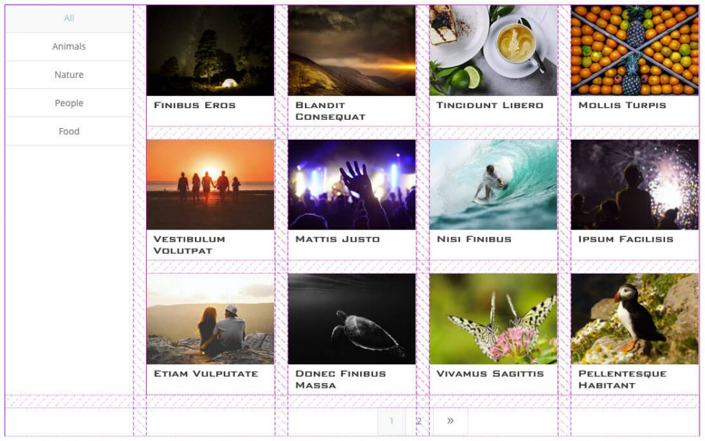 Divi FilterGrid CSS Grid Left Filters
