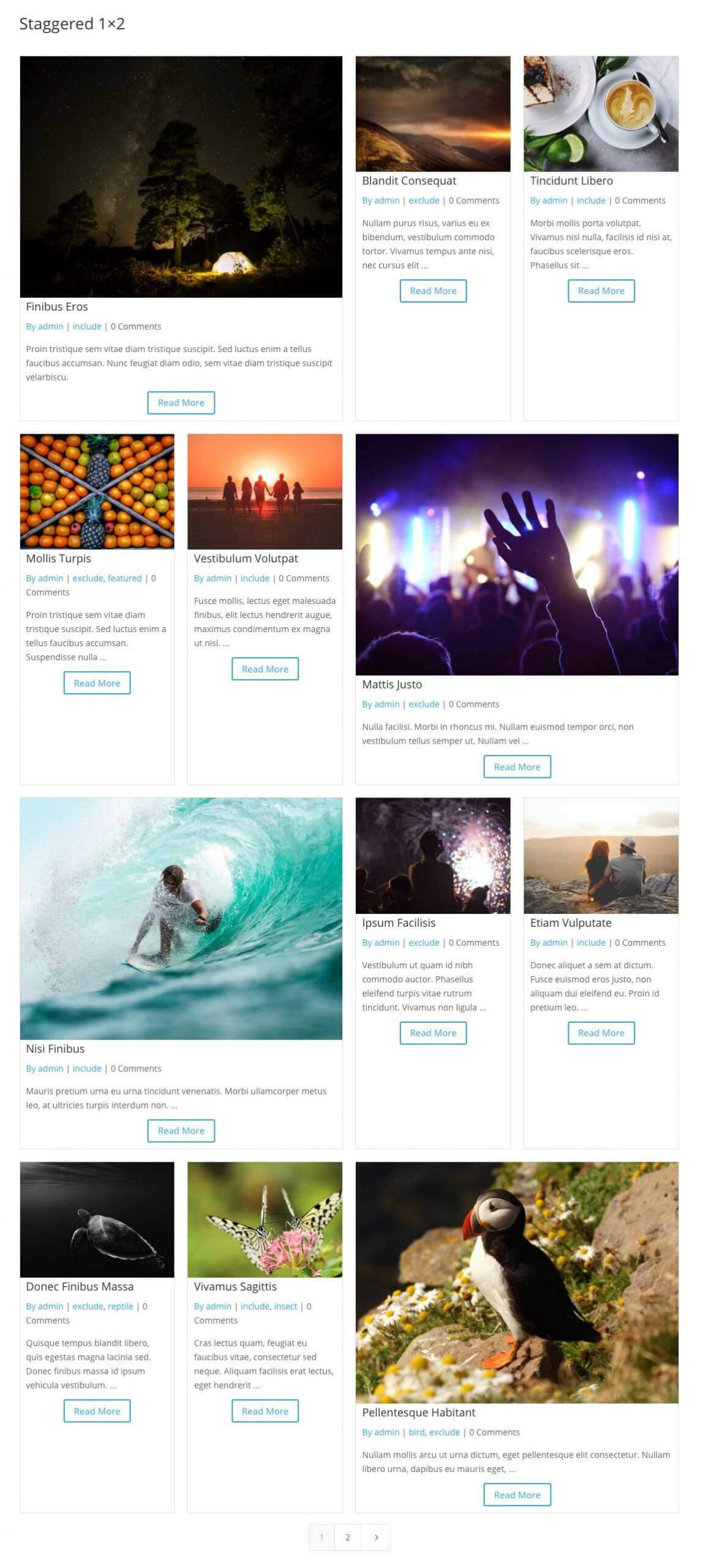 Divi staggered grid items 1x2